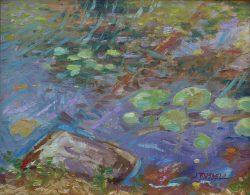 Black-Pond-Lily-Pads
