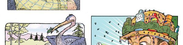 Adirondack Explorer - Humor